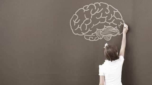 How Your Child's Brain Works + FREE WORKSHOP